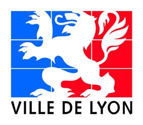 Nettoyage des sols de l'hotel de ville Lyon apres une soirée